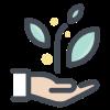 hand-planting 1